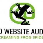 Phần mềm hỗ trợ tối ưu website   Screaming Frog Seo Spider 14
